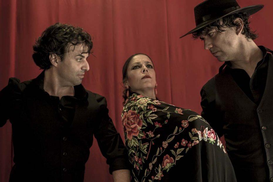 Fotografía para bailaores flamenco